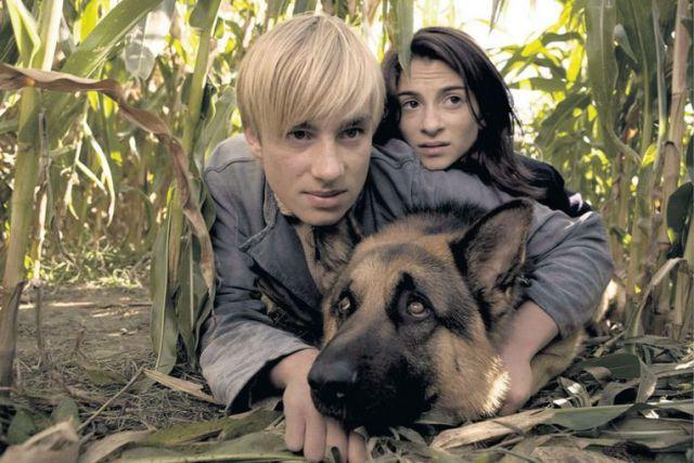 Film Snuf de hond in oorlogstijd