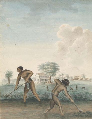 Kunstlezing: Slavernij in de Kunst