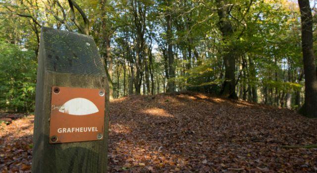 Historische lezing: Grafheuvels op de Veluwe