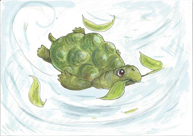 Voorleesspecial Schildpad zoekt een huis (3+)