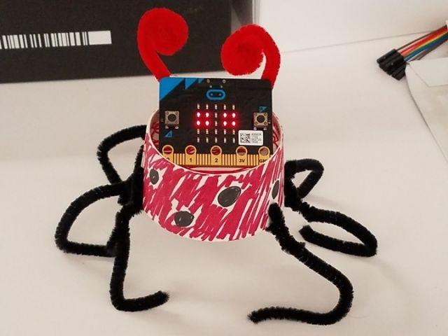 Robotmania: Programmeer een huisdier met de micro:bit (10-12 jaar)