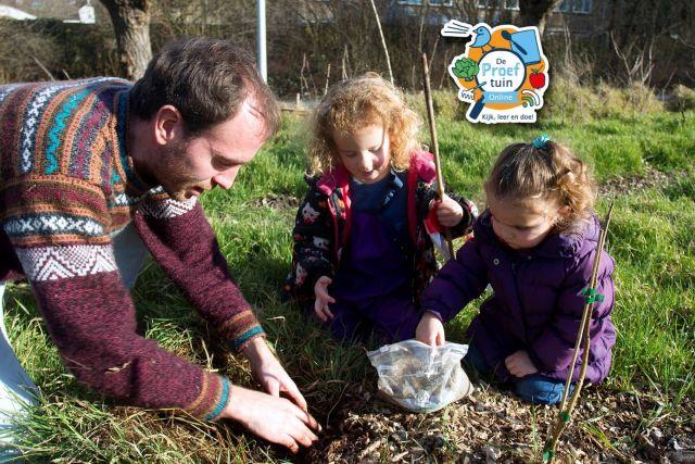 De Proeftuin Online: Voedselbosprincipes in de kleine tuin