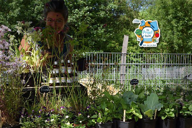 De Proeftuin Online - Beginnen met een Eetbare Tuin