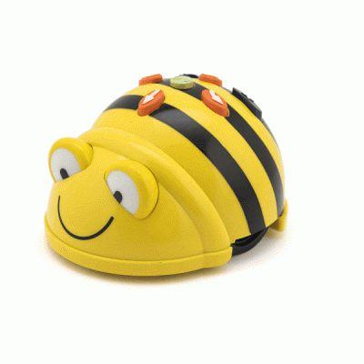 Programmeren met Bee-Bot