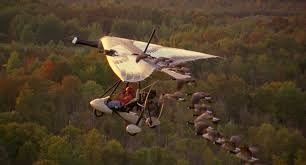 Fly away home met avondexcursie na afloop