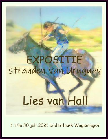Expositie - Lies van Hall