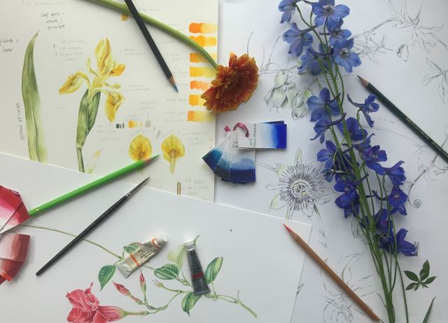 Workshop Botanisch Tekenen door Sandra Klaassen