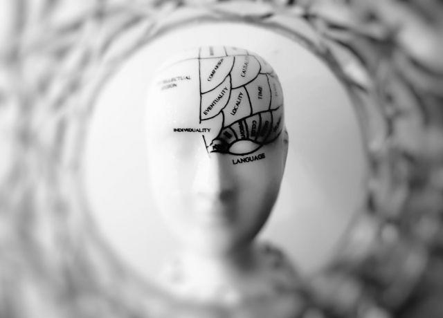 Seniorencollege - Hoofdzaken, een kijkje in de hersenen?