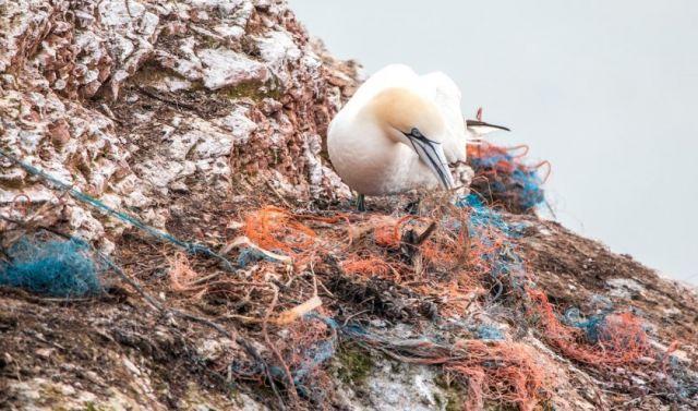 Lezing Arend Bolt over Plastic Soep