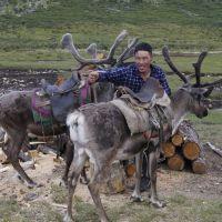 Mongolië en Taiga