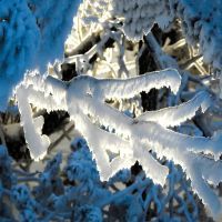 Poëzietheater 't sneeuwt