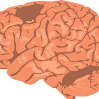Kenniscafé: Hersenendood en bewustzijn