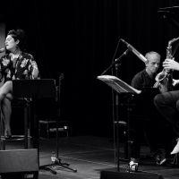 Concert voor nieuwkomers: Maak kennis met de Nederlandse taal via kleinkunst