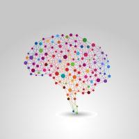 Present Moment | Introductie Mindfulness reeks 1