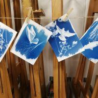 Cyanotypie | schilderen met licht