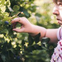 Rondleiding 'Smullen van het voedselbos'