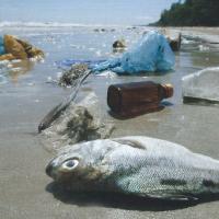 Lezing: Plastic (soap) door Ron Vodegel