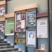 Expositie - Kunstproject 'Onderlinge Verbondenheid