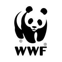 Kindercollege: Weg met de plastic soep, door het Wereld Natuur Fonds
