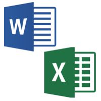 Introductie Word en Excel (online)